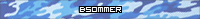 BSommer [1464553]
