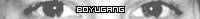 boyuGang [1618913]