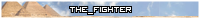 The_Fighter [1790179]