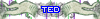 TED [496062]